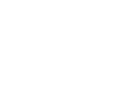 Paard-White-160